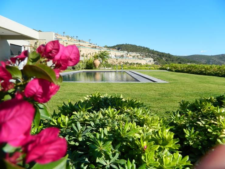 ISLA GRUP  – Poyraz Konakları:  tarz Bahçe