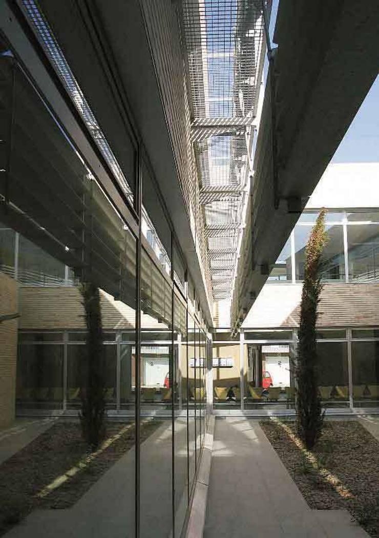 Vista del patio central: Paisajismo de interiores de estilo  de Argola Arquitectos
