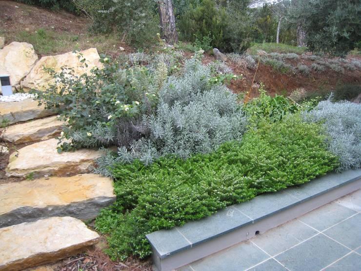 modern Garden by GIARDINI VALLE DEI FIORI
