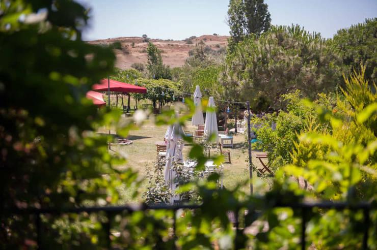 ARAL TATİLÇİFTLİĞİ – Karakız: modern tarz Bahçe