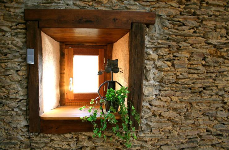 Fenster von Capra Architects