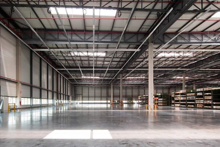 Centro Logístico Mercedes-Benz: Edificios de oficinas de estilo  de TBI Architecture & Engineering