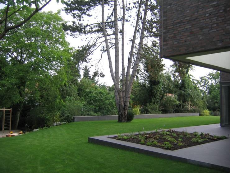 Staudenbeet an der Terrasse:  Garten von Katrin Lesser,