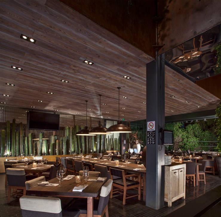 Sonora Grill Prime Durango:  de estilo  por Central de Arquitectura