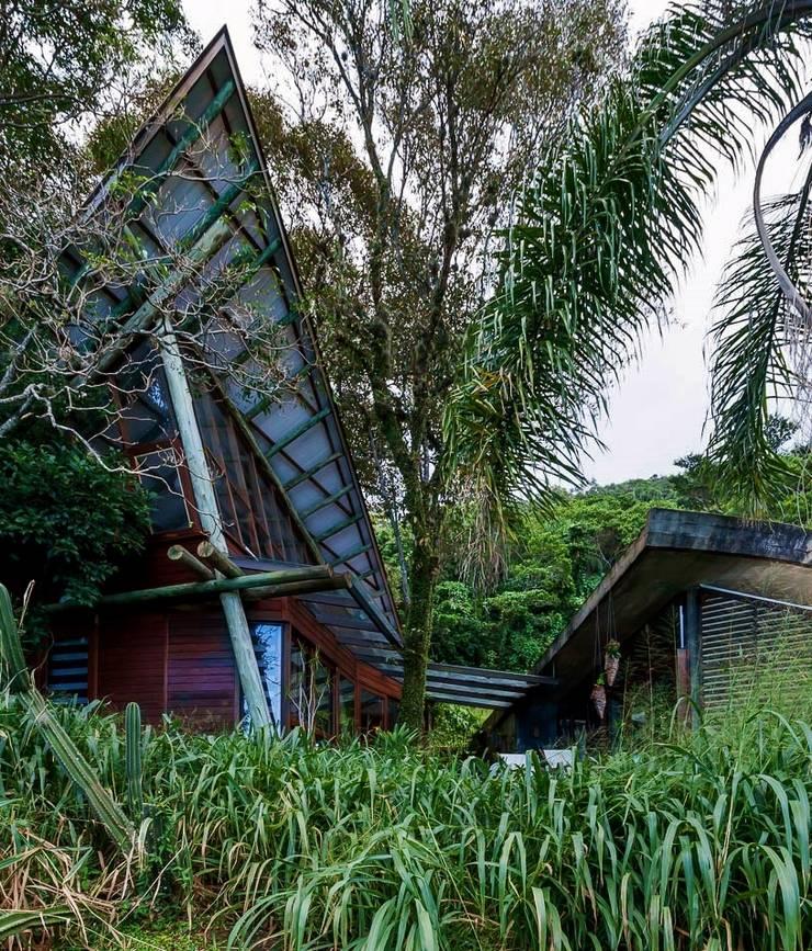 Casa da Floresta: Casas campestres por Ferraro Habitat