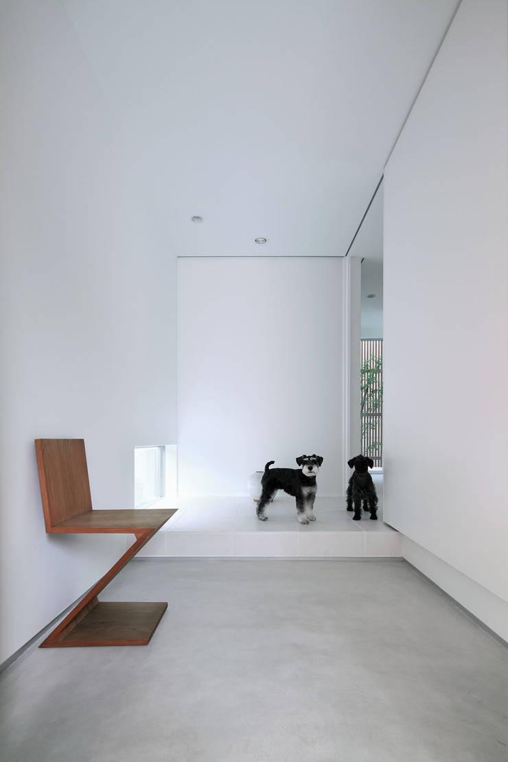 わんわんハウス: ARCHSOL DESIGNが手掛けた廊下 & 玄関です。