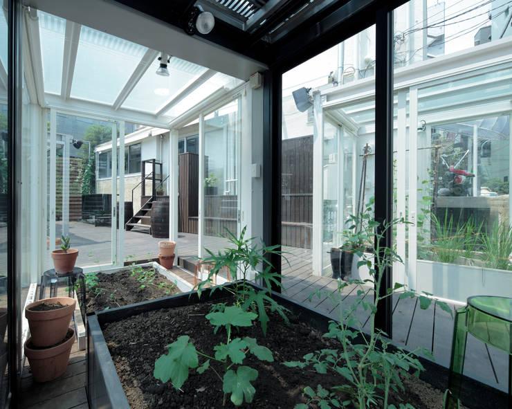 六本木農園FARM: OnDesign が手掛けた庭です。