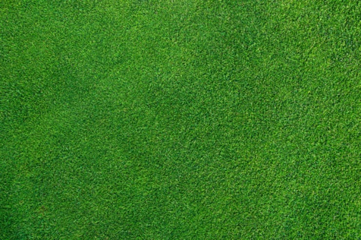I nostri servizi di manutenzione: CAROTATURE DEL PRATO.: Giardino in stile  di Dal Ben Giardini,