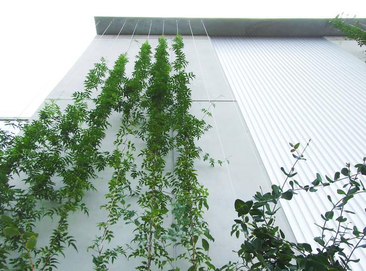 緑の環境と住宅: ユミラ建築設計室が手掛けた家です。,モダン