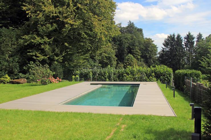Pool zum Waldrand:  Pool von Schweizer Architekten HTl/STV
