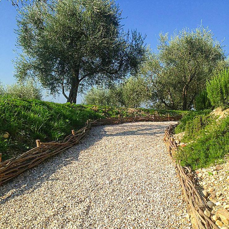 Studio Athesis: kırsal tarz tarz Bahçe