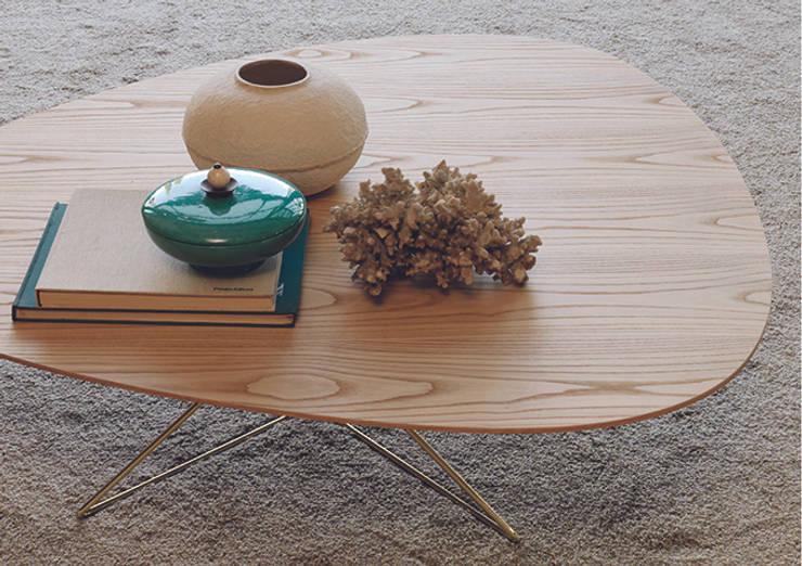 غرفة المعيشة تنفيذ Setsu & Shinobu Ito