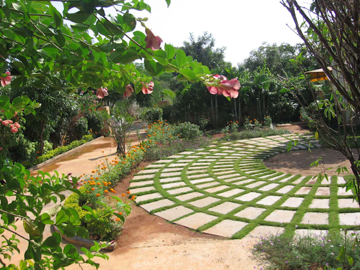 landscaping:   by Niche Habitats