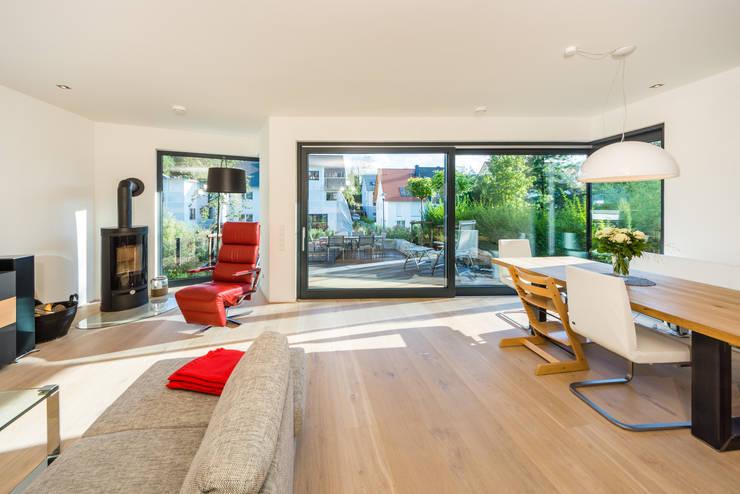 Living room by Helwig Haus und Raum Planungs GmbH, Modern