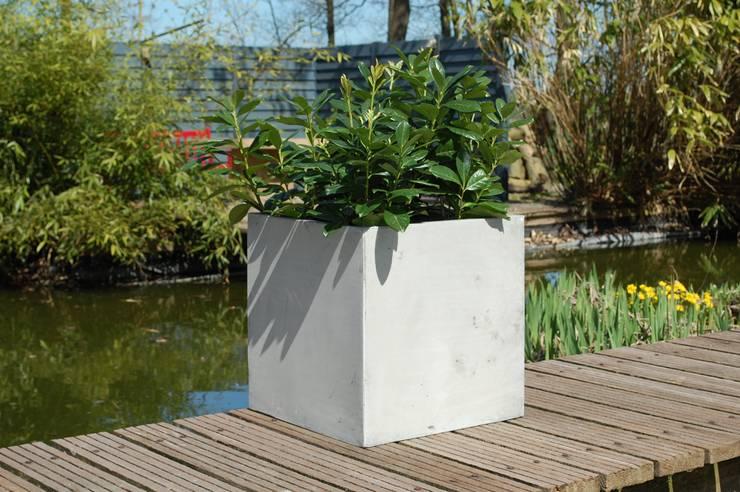 Pflanzkübel Fiberglas Im Beton-Design Von AE Trade Online