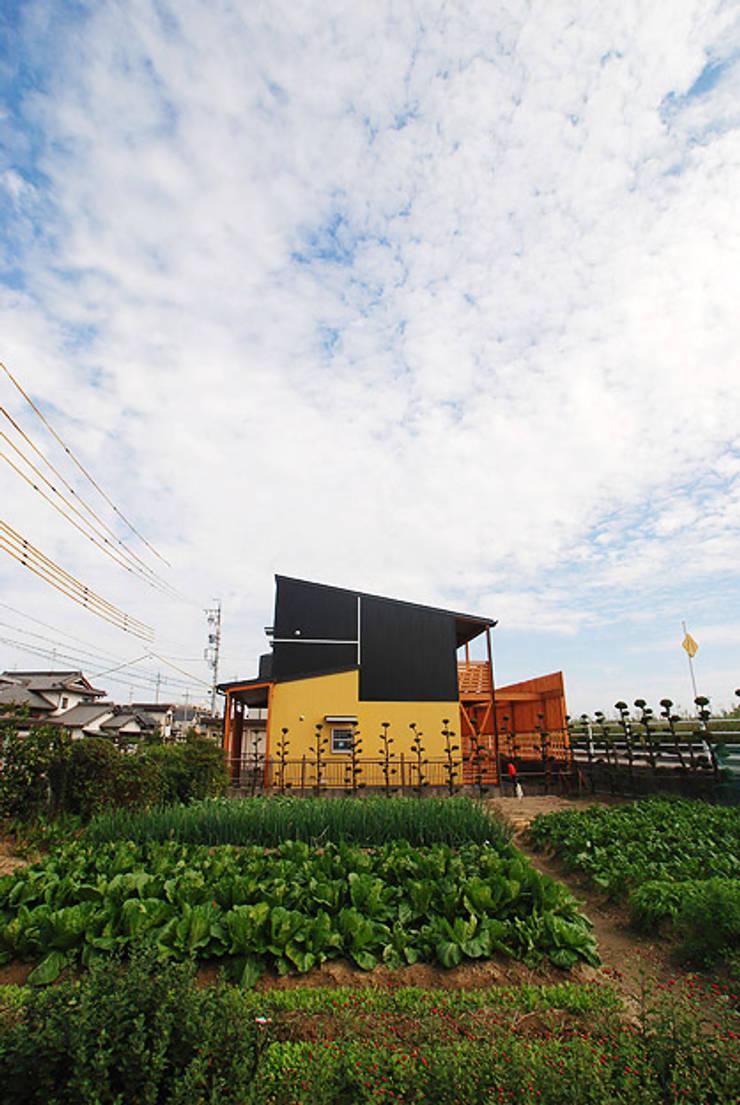 連格子のある家: Atelier繁建築設計事務所が手掛けた庭です。