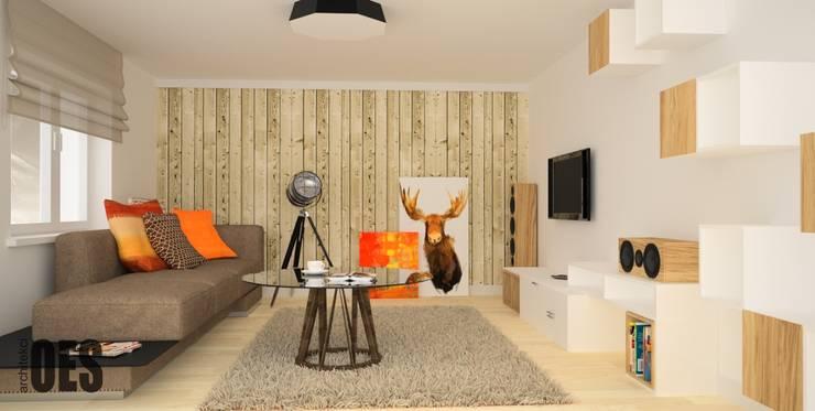 Projekt aranżacji wnętrz domu pod Krakowem 2: styl , w kategorii Salon zaprojektowany przez OES architekci,