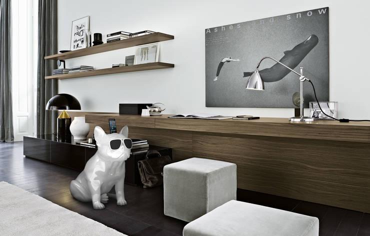 AeroBull: Maison de style  par Jarre Technologies
