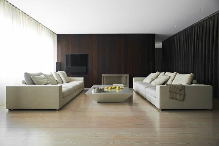 A HOUSE: Salones de estilo  de Vaíllo & Irigaray