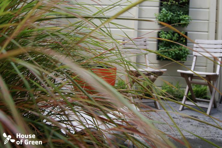 Tuinwinkel van House of Green:  Tuin door House of Green, Modern