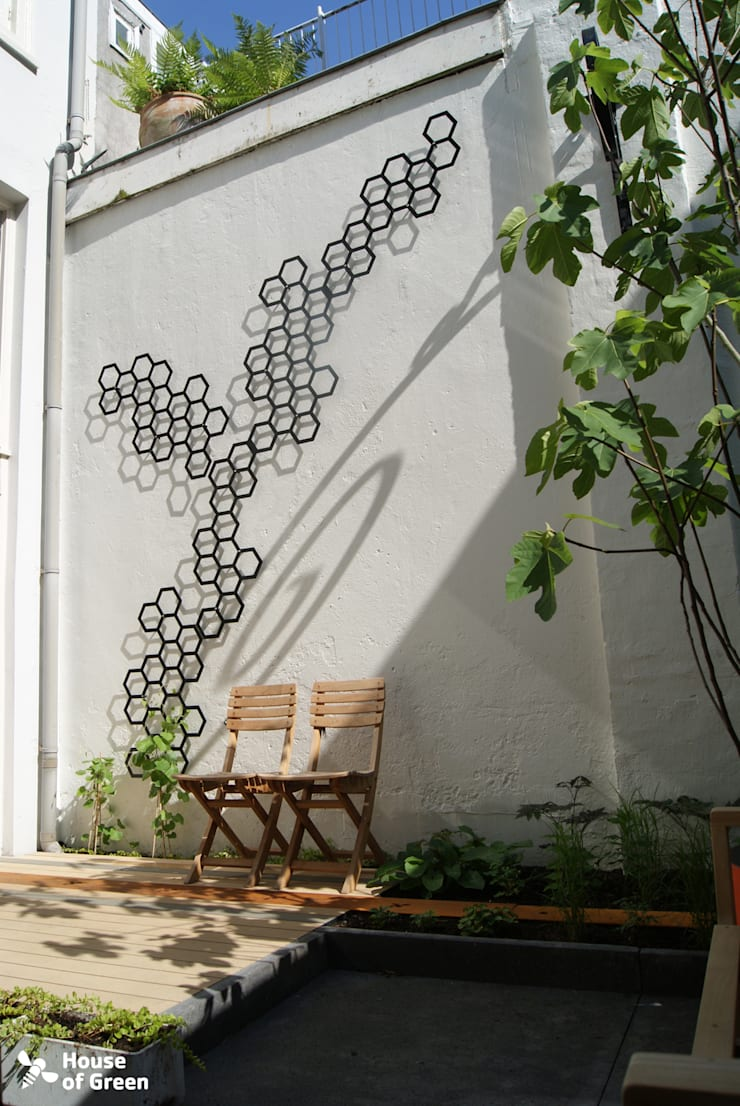Flora trellissen @ House of Green: modern  door House of Green, Modern