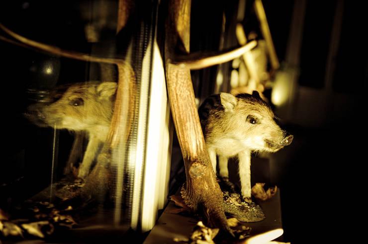 Aberlour Hunting Club:  de style  par Studio JEAN COUVREUR