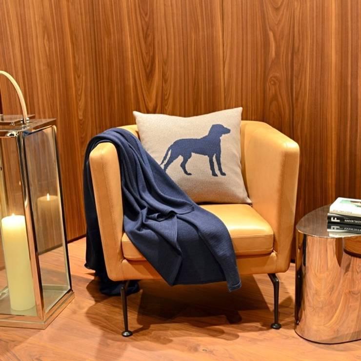 modern Living room by Lenz & Leif