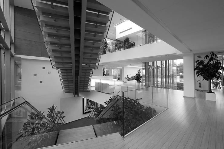 RAINBOW Imagination factory: Ingresso & Corridoio in stile  di Studio Bianchi Architettura