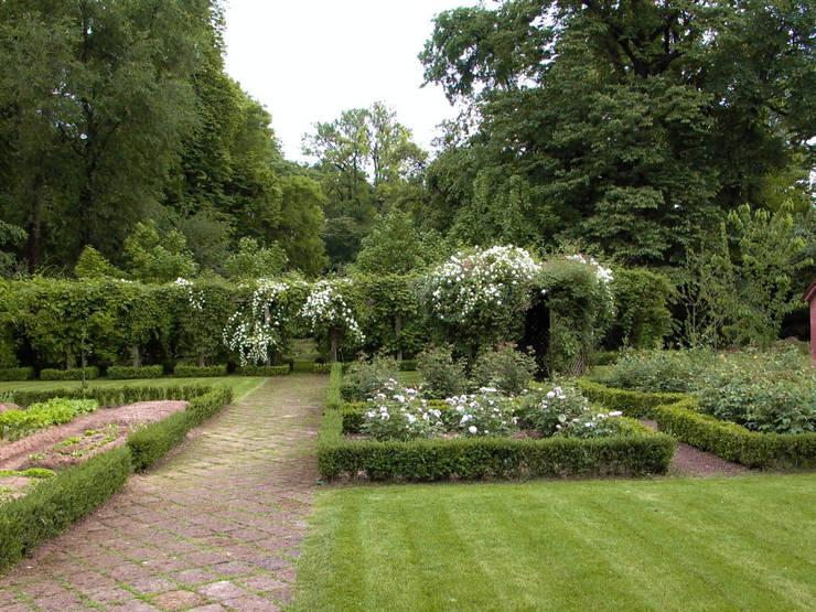 Collaborazione con il paesaggista Tom Wright: Giardino in stile  di Dal Ben Giardini
