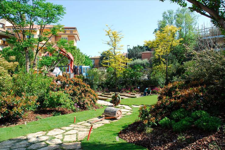 Privacy ritrovata nel giardino di città :  in stile  di Pellegrini Giardini