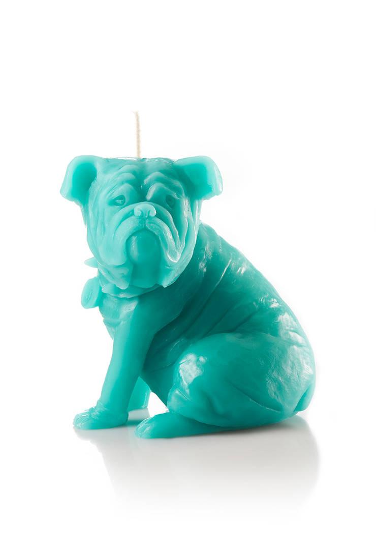 Bougie déco chien Sam turquoise: Salon de style  par Bougies la Française