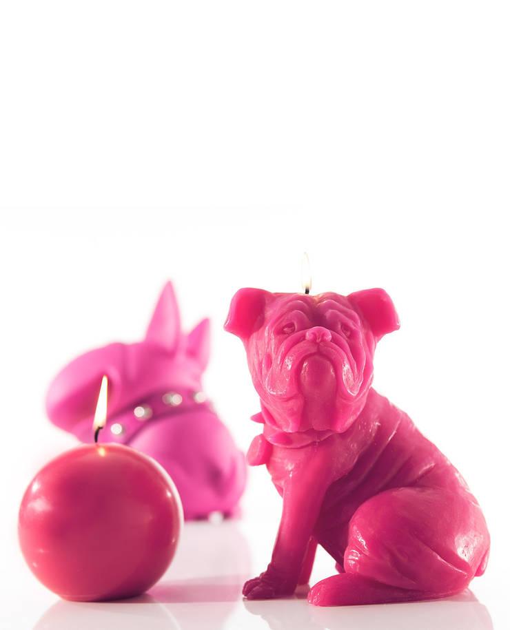 Bougie déco chien Sam rose pivoine: Maison de style  par Bougies la Française