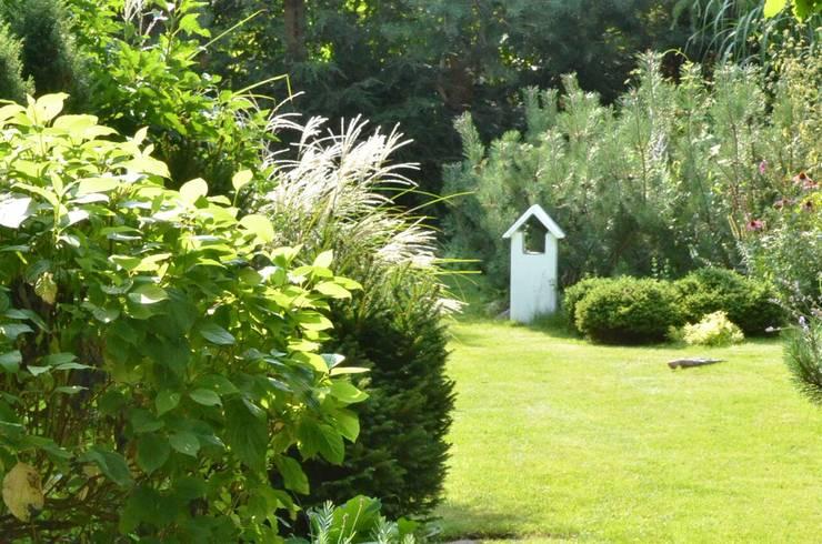 Moderner Garten von NISZA DESIGN OGRODY Modern