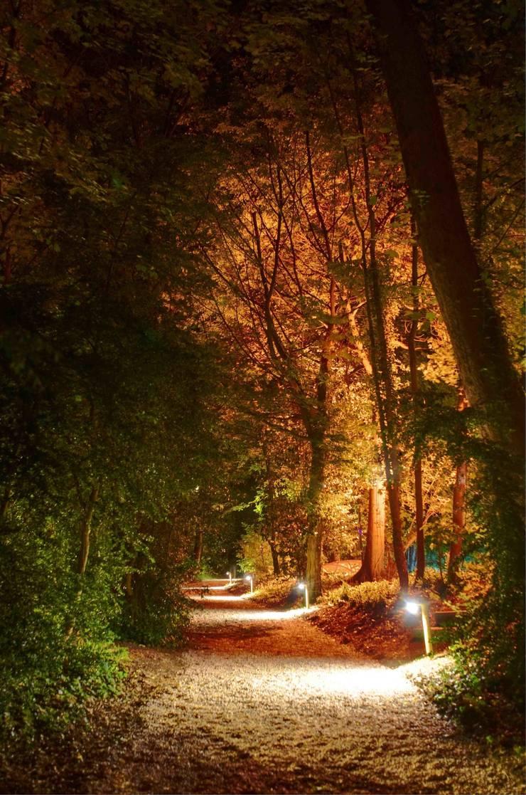 allée chemin ambiance automnale:  de style  par Artlight Design