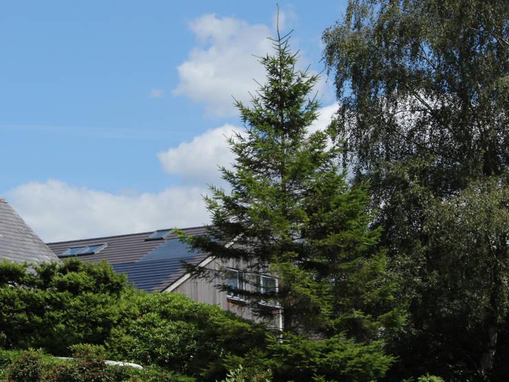 Maisons de style  par Phi  Architects, Scandinave