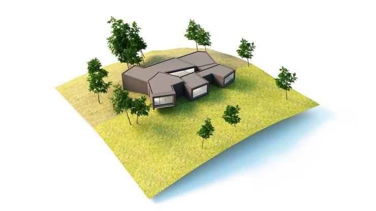 Imagen exterior 3D :  de estilo  de Icaras 3D