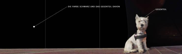 schuchmanns:  Gastronomie von blumprodukt ,Industrial