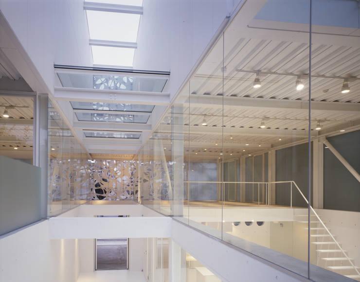 studio M architects / 有限会社 スタジオ エム 一級建築士事務所:  tarz Evler,