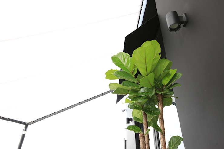 5VER의 컨셉이 있는 프렌치한 플라워 카페 <q>5VER THE FLOWER</q>: 1204디자인의