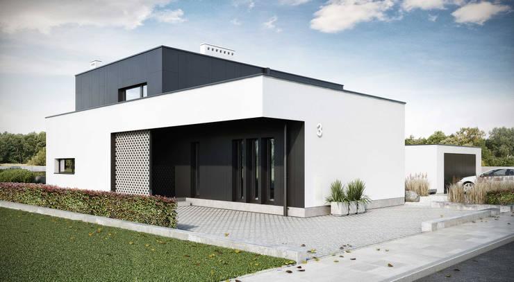wejście do budynku: styl , w kategorii  zaprojektowany przez ENDE marcin lewandowicz