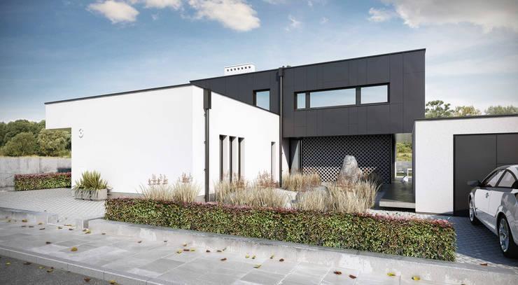 reprezentacyjny front: styl , w kategorii Domy zaprojektowany przez ENDE marcin lewandowicz