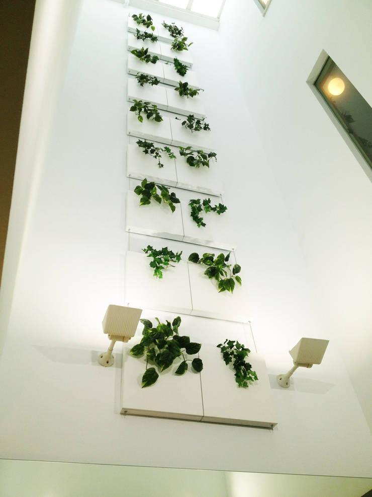 Cascada Vegetal Serastone: Hogar de estilo  de Systemclip by Serastone