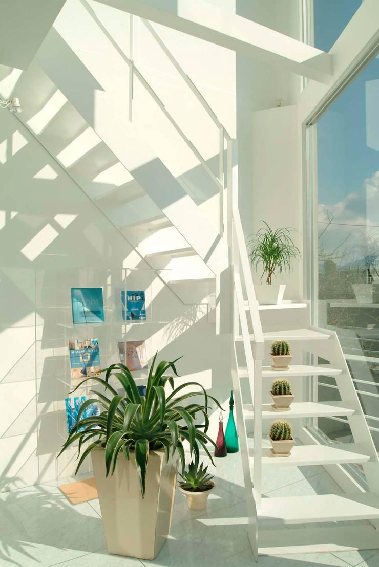 広島 M邸: ヴィジュアルスペールデザインが手掛けた廊下 & 玄関です。