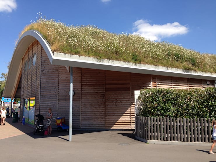 by BBS Green Roofing