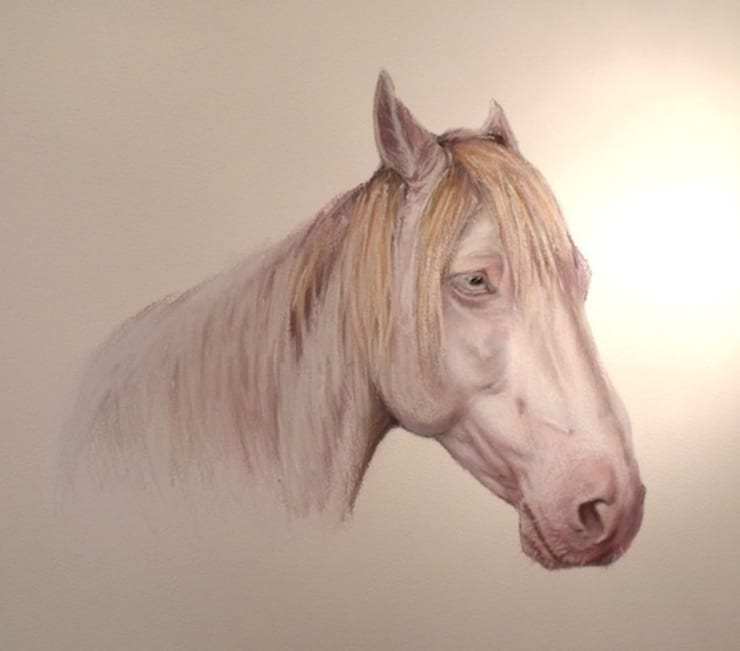 Horse portraits:  Artwork by ThomasAdamskiArt