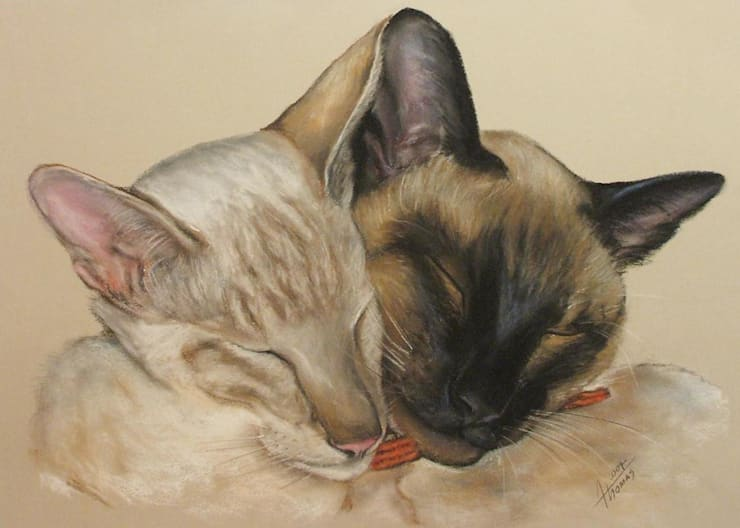 Cat portraits:  Artwork by ThomasAdamskiArt