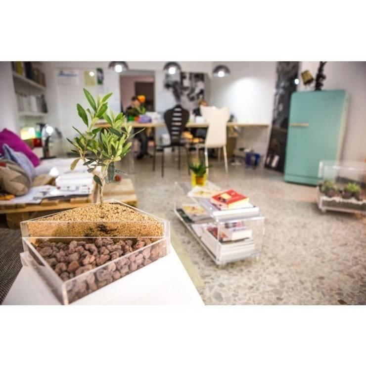 Niwabox - Giardini in scatola: Casa in stile  di Designtrasparente,