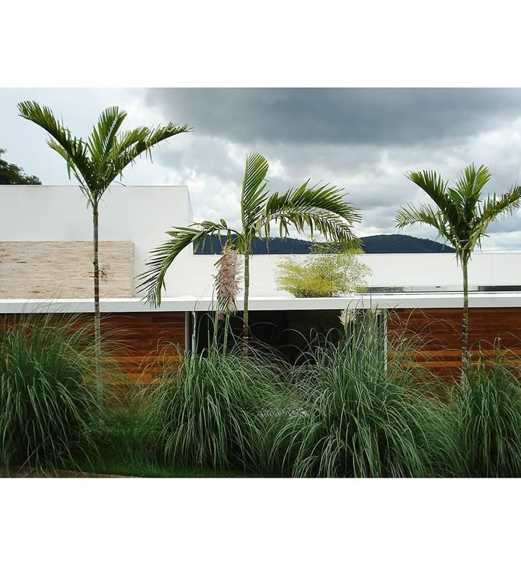 Projetos: Terraços  por Marcelo Bellotto Paisagismo Conceitual,Minimalista