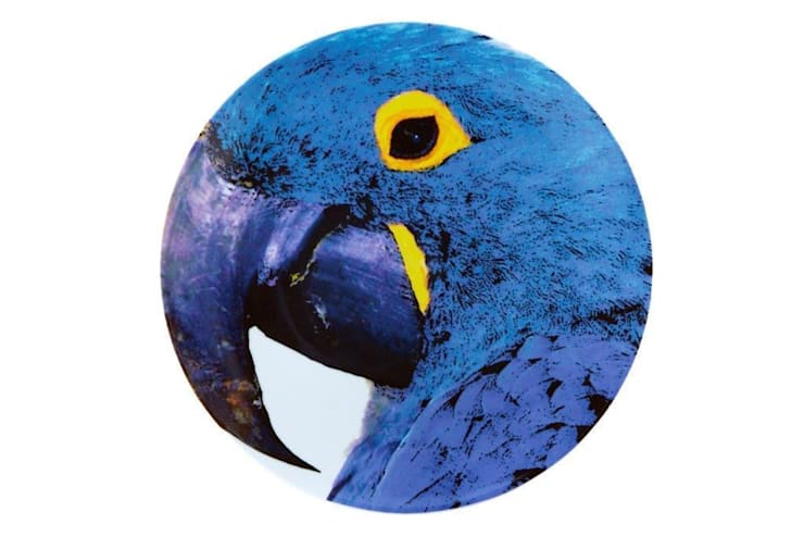 Sous Plat Arara Azul:   por Olhar o Brasil,