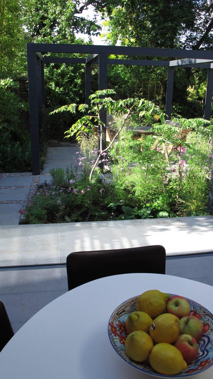 Contemporary Pergola Garden:  Garden by Fenton Roberts Garden Design
